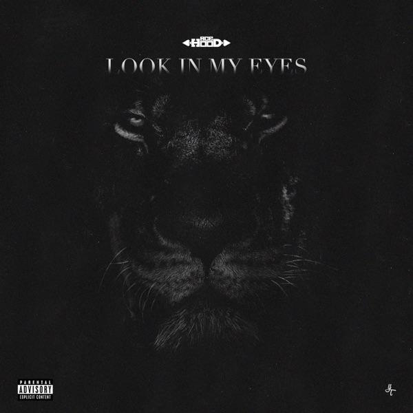 Ace Hood - Look In My Eyes