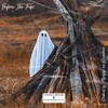 Knndygrn - Before the Trips - EP artwork