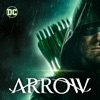 Arrow, Season 8 wiki, synopsis