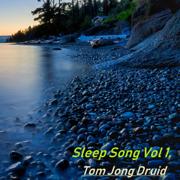 Sleep Song, Vol 1. - Tom Jong Druid - Tom Jong Druid