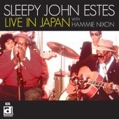 Sleepy John Estes - Corrina Corinna