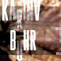 A Casa Caiu-Karina Buhr