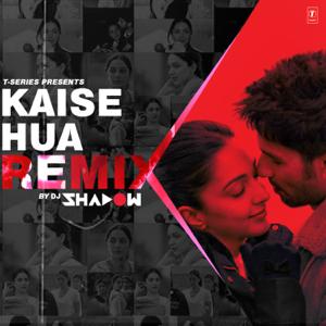 Vishal Mishra & DJ Shadow - Kaise Hua Remix