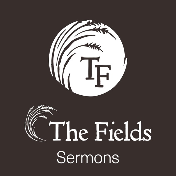 The Fields Church