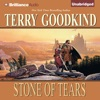 Stone of Tears: Sword of Truth, Book 2 (Unabridged) iphone and android app