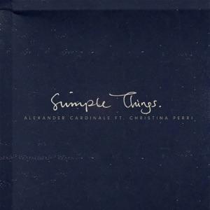 Simple Things (feat. Christina Perri) - Single