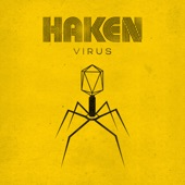 Haken - Canary Yellow