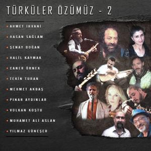 Various Artists - Türküler Özümüz, Vol. 2