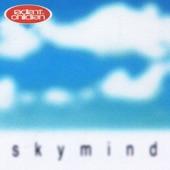 Sky Mind - Single