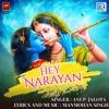 Hey Narayan - Single