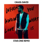 When You Know What Love Is (Star.One Remix) - Single