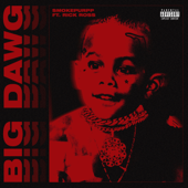 Big Dawg Feat. Rick Ross  - Smokepurpp