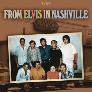 Elvis Presley - From Elvis In Nashville