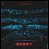Alan Walker & ISÁK - Sorry artwork