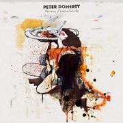 Grace / Wastelands - Peter Doherty