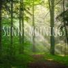 Sunny Mornings - Peder B. Helland