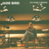 Jade Bird Black Star free listening