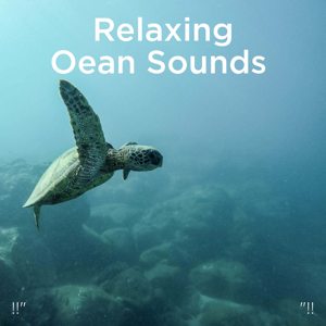 "Relajacion Del Mar & Relajación - !!"" Relaxing Ocean Sounds ""!!"