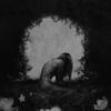 Wildways - Havana обложка