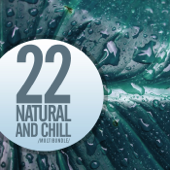 22 Natural & Chill Multibundle