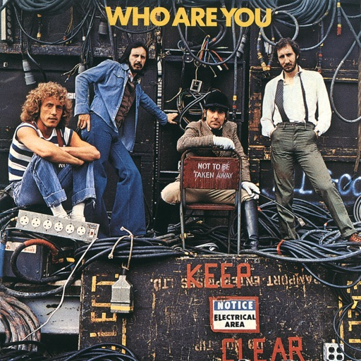 Art for Who Are You by The Who