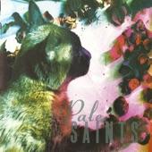 Pale Saints - Sight of You