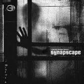Synapscape - Dirty Deal (Imperial Black Unit Remix)