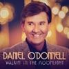 Walkin' In the Moonlight, Daniel O'Donnell