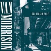 Van Morrison - Wasted Years