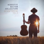 Acoustic Guitar Collective - I'm Not in Love