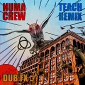 Dub FX;Numa Crew - Teach (Remix)