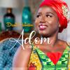 Diana Hamilton - Adom Grace artwork