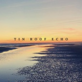 Tin Roof Echo - The Long Country Song