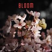 BLOOM 604 - Rapture