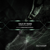 Vale Of Tears - Still Lost (Superstrobe Remix) artwork