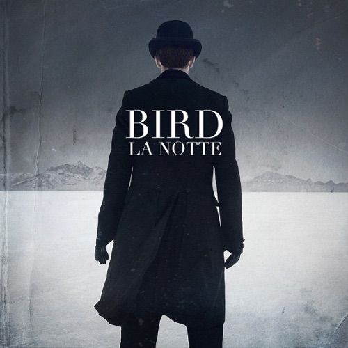 Album artwork of Bird – La Notte