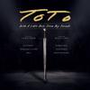 Toto - Till The End (Live) kunstwerk