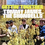 Tommy James & The Shondells - Lost in Your Eyes