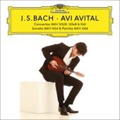 Kammerakademie Potsdam - J.S. Bach: Violin Concerto No.1 in A minor, BWV 1041 - adapted for Mandolin and Orchestra by Avi Avital - 1. (Allegro moderato)