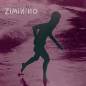 Ziminino - Intermitência