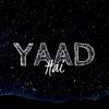 Yaad Hai Single