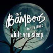 The Bamboos - While You Sleep (feat. Ev Jones)