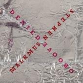 Stephen Malkmus & The Jicks - Rushing the Acid Frat