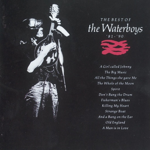 Art for The Whole Of The Moon by The Waterboys