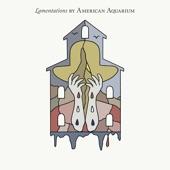 American Aquarium - A Better South