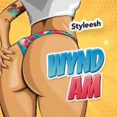 Wynd Am artwork