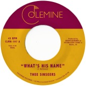 Thee Sinseers - What's His Name