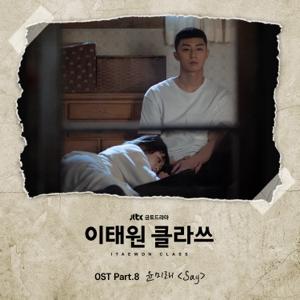 尹美萊 - Say