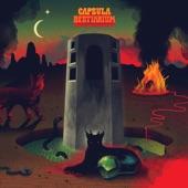 Capsula - Around