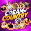 Various Artists - Cream of Country 2019 artwork